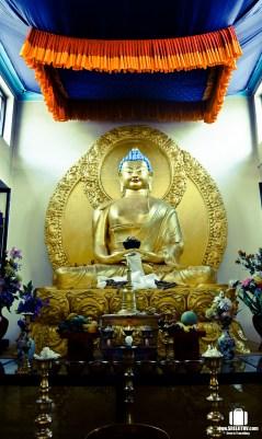 Shanti Stupa, Ladakh (14)