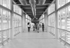 Petronas, KL - Sree is Travelling (10)