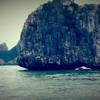 www.sreep.com 20160321_040135 Vietnam, Halong-Bucht: Unbeschreibliches Naturspektakel