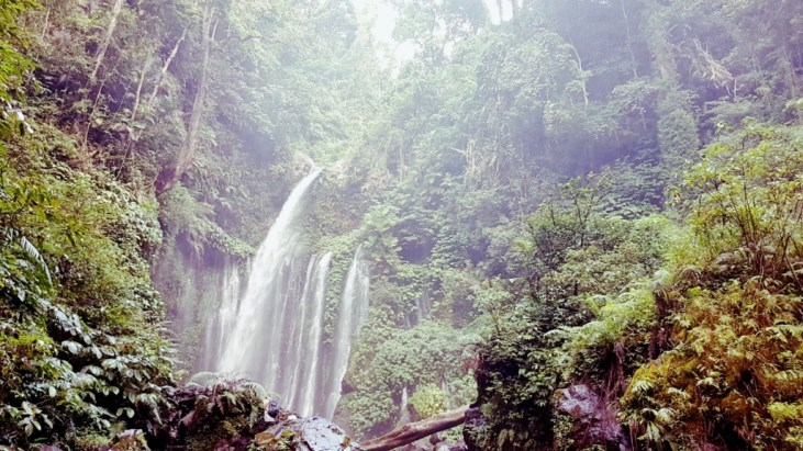 www.sreep.com 20170605_171906 Indonesien, Lombok: Sendang Gile and Tiu Kelep - Dschungeltour zum Wasserfall!