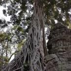 www.sreep.com 20180214_1138242130667356 Cambodia: Tempelanlage Ankor Wat - Kambodschas Wahrzeichen