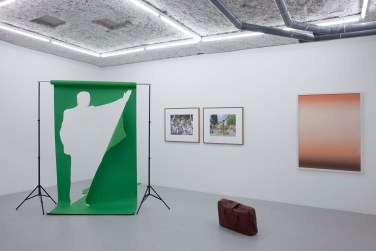 Green Screen in Before and After at Galerie Balice Hertling, Paris