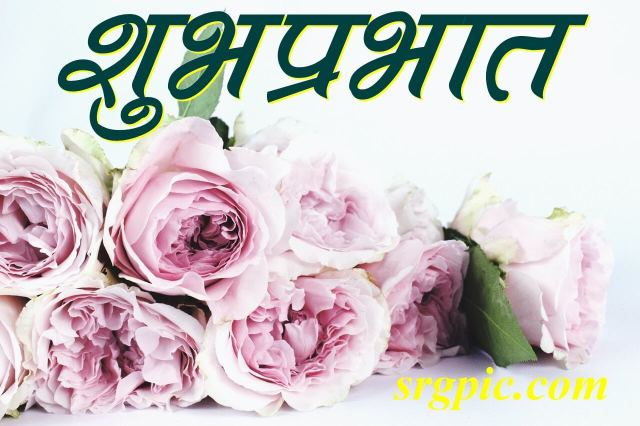 pink-petaled-flower-boquette-morning-in-hindi