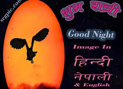Images-for-good-night-cover-photo