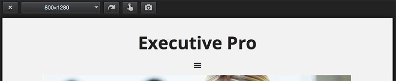 executive-pro-menu-before