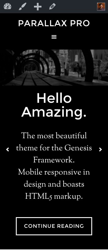 parallax-pro-front-page-soliloquy-mobile