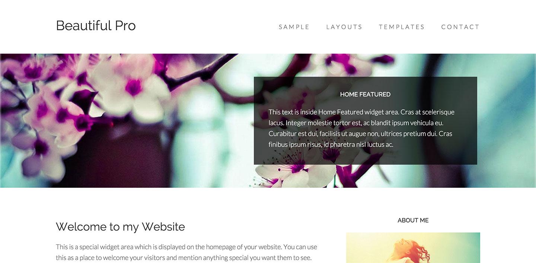 beautiful-pro-widget-overlay-responsive-image