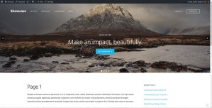Soliloquy slider on single Posts and static Pages in Showcase Pro