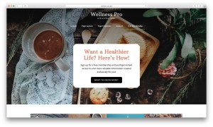 How to overlay transparent header and nav on Front Page 1 section in Wellness Pro