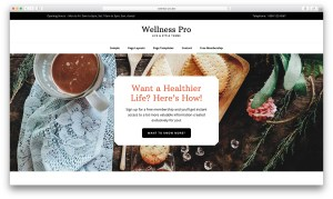 Utility Bar in Wellness Pro