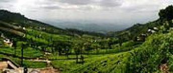 Haputale pass Haputale Sri Lanka Island Tours