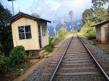 Railway_line_near_Haputale Tea_plantation_Haputale Sri Lanka Island Tours