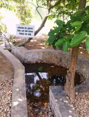 Kelaniya Temple Sri Lanka 2