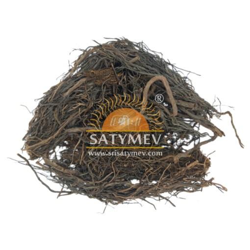SriSatymev Bargad Root   Banyan