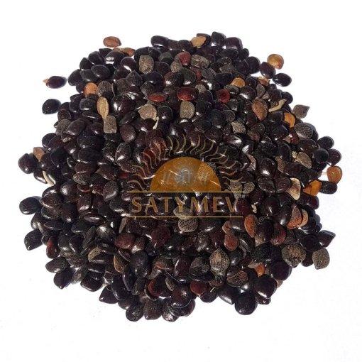 SriSatymev Chaksu | Cassia Absus Seeds