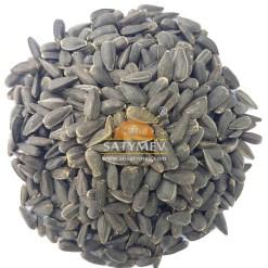 SriSatymev Sunflower Seeds | Surajmukhi Beej