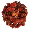 SriSatymev Pomegranate Flower Dried | Anaar Ke Sukhe Phool | Madulai