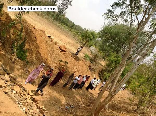 Building check dams