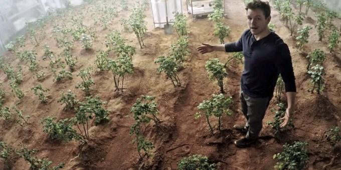 Potatoes_on_Mars
