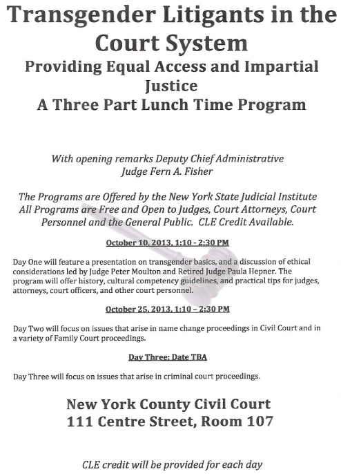 trans-litigants-in-the-court-system-flyer