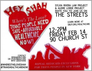 Trans Healthcare Direct Action Flyer