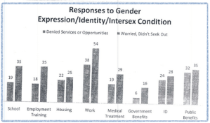 responses to gender expression identity
