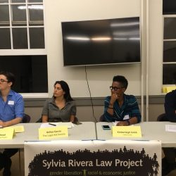 Panel members from SRLP, The Legal Aid Society, and Callen-Lorde