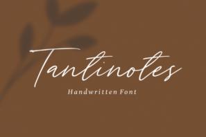 Tantinotes - Monoline Font