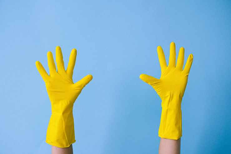 crop unrecognizable person in rubber gloves raising arms