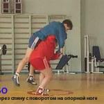Книги Харлампиева А.А. по борьбе Самбо