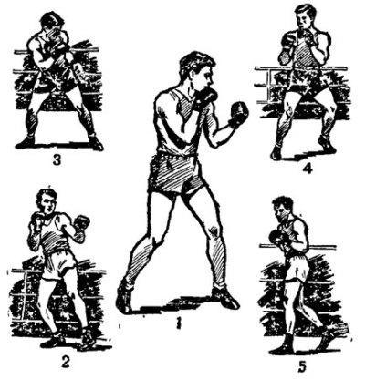 Боксерские стойки