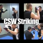 ММА (Часть 15) — Eric Paulson CSW  (Combat Submission Wrestling) system) —<b> Striking </b>