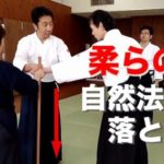 Явара (яп. 柔ら, Yawara) — искусство борьбы