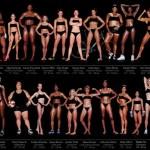 Как выглядят <b>олимпийские чемпионы</b> по различным видам спорта