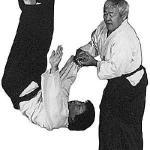Освоение айкидо с японским мастером Кен Ота серия из 6 DVD (Mastering Aikido with Japanese Master Ken Ota Series 6 DVD) [Aikido, DVDRip, ENG] (Видеоурок)
