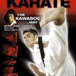 Карате: Метод Кавасоэ, от начинающего до черного пояса / Karate the Kawasoe Way — Vol. 1 — 4 [DVD], Beginner to Blackbelt [2005, Традиционное карате, DVDRip, ENG] (Видеоурок)