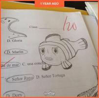 A perfectly-drawn Marlin.