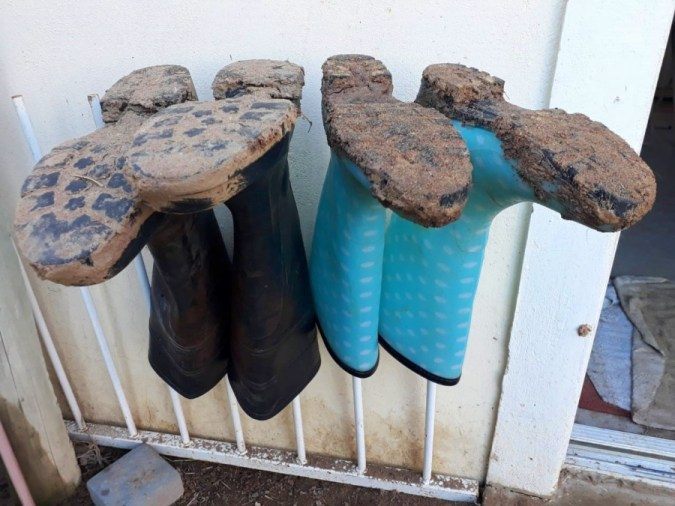 Gumboots are caked in mud