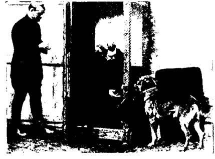 Коммутатор открыт. Собака «Марс» исполнила заданное внушение: принесла телефонный блокнот.