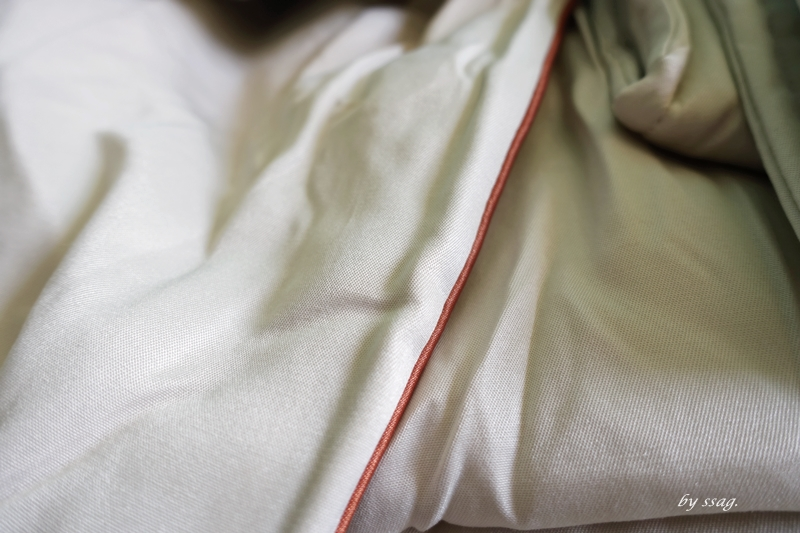 【立新寢具】德國銀離子防蹣抗菌素色刺繡天絲涼被/四季被 – 草莓卡比 ღ 生活誌