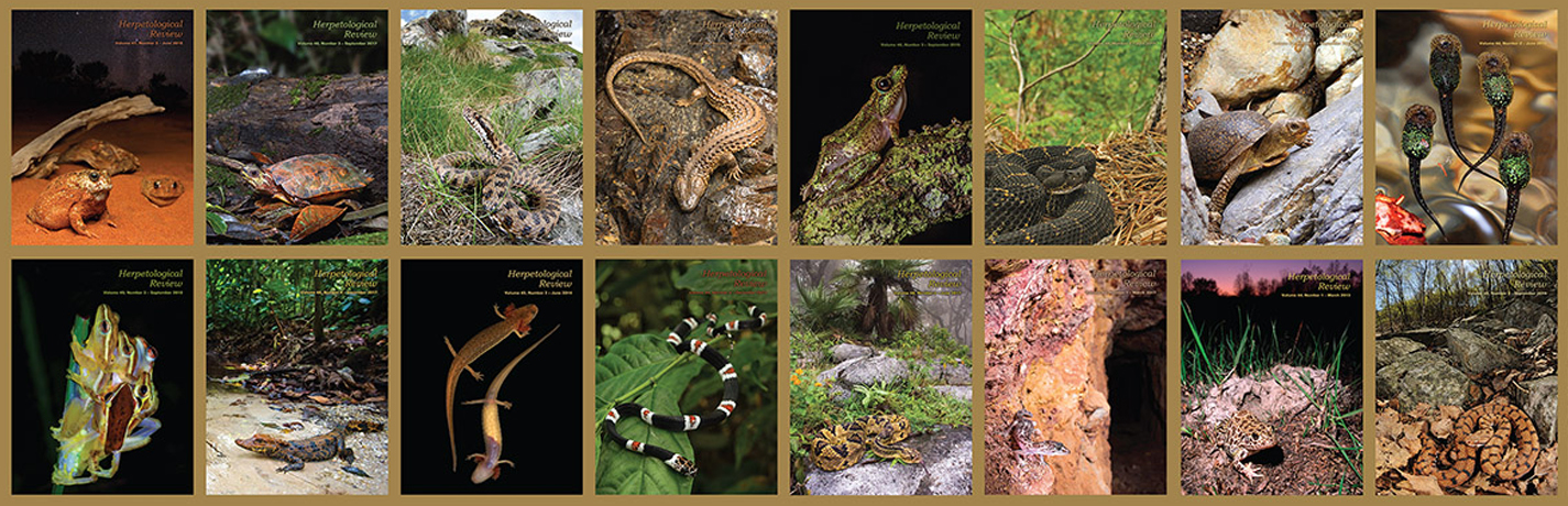 Herpetological Review 50(4) available online!