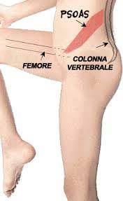 muscoli psoas CI: esercizio può funzionare (1)