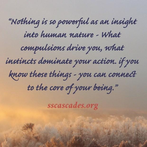 Insightful