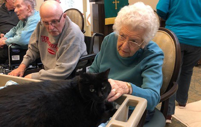 Residents enjoying Sheboygan Humane Society visit at Sheboygan Senior Community Nursing Home.