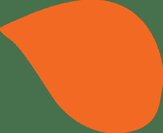 Service Providers & Staff