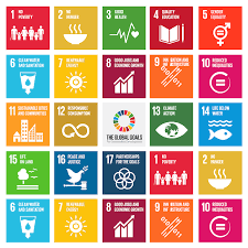Supporting the United Nations Sustainability Development Goals (SDG)