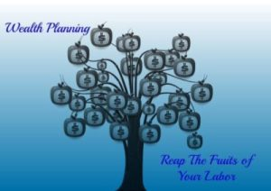 Wealth Plan Money Tree