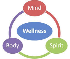 Image result for body, mind, and soul connection