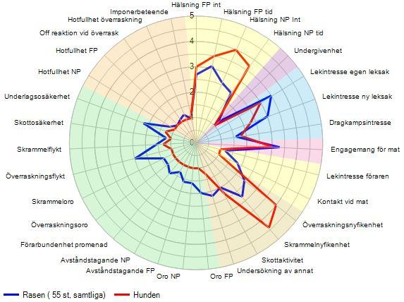 Spindeldiagram för en Berner Sennenhund
