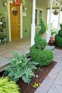 Small front entry garden with shade tolerant plants